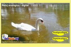 reloj analogico digital