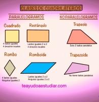 Los cuadriláteros tienen 4 lados